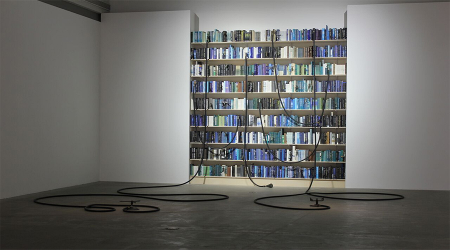 This sculptural installation by Blue McRight features nine ascending rows of shelves completely filled with a collection of books in various shades of blue, green, and white. Some books are connected to one another by tube-like forms extending from their spines. These tube-like connects drape down to and along the gallery floor leading to sprinkler-like devices. While the devices and potions of the tube on the floor exist in an unlit environment, the bookcase and books rendered into the wall are emitted with bright lights from the gallery ceiling.