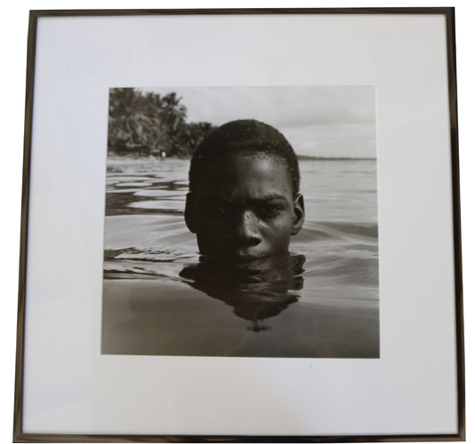 In this photograph by the artist Tony Gleaton, a person of color is submerged in water. The person's head is only visible (from the top of his lip to the top of his head). There is also some foliage and a cloudy sky in the background.