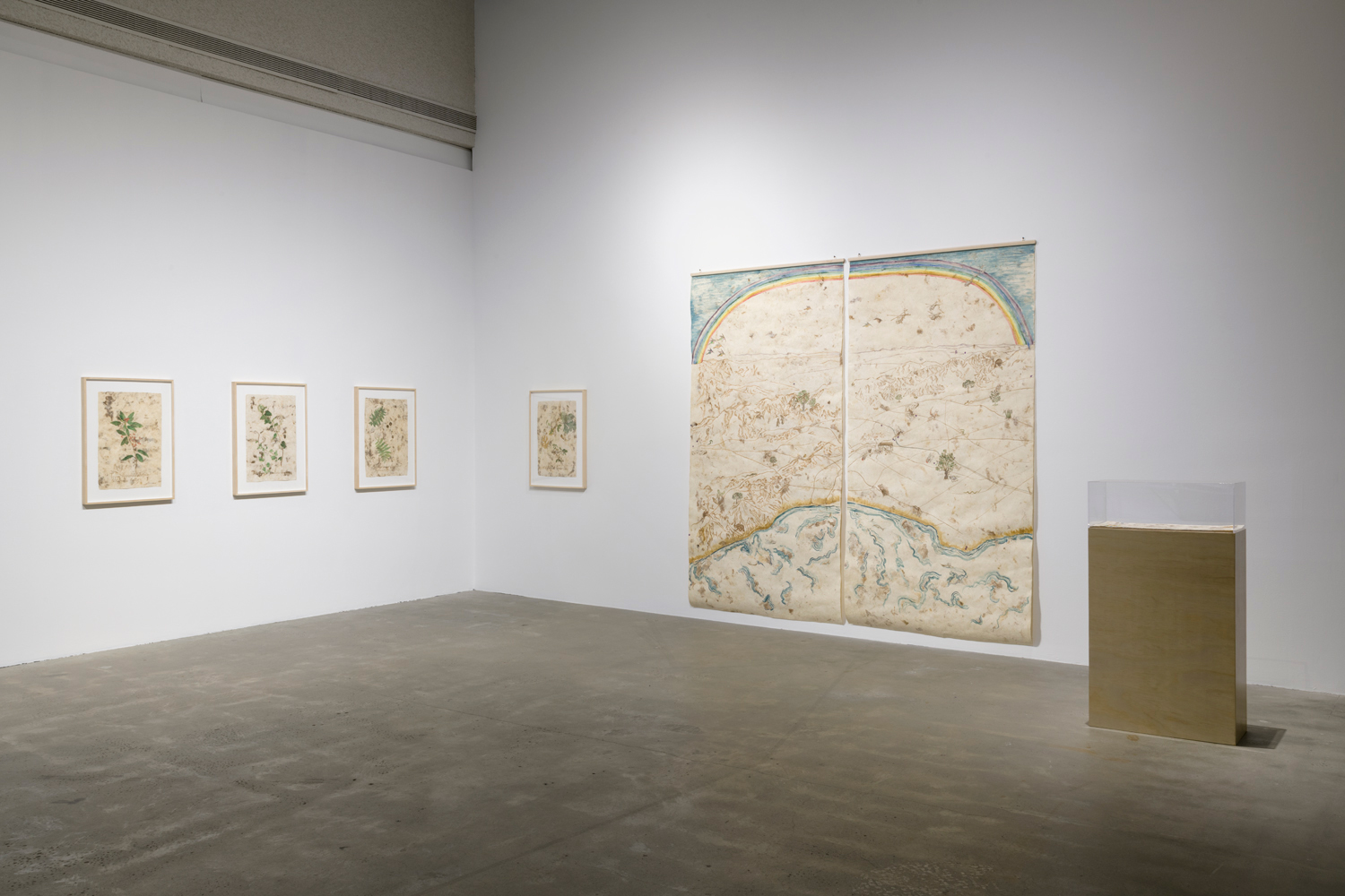 In this artwork installation by the artist Sandy Rodriguez, there are four framed artworks hanging on the wall. These artworks depict various plants native to California, including Hollyleaf Cherry, Oak, Walnut and California Holly, and are painted on hand-made amate paper with paint pigments made from plants foraged by the artist. To right of these small works is a large scale painting in a diptych format. This work is also painted on hand-made amate paper with paint pigments made from plants foraged by the artist. This work depicts a map of the San Gabriel and Santa Monica mountains with a rainbow overhead at the top. It also depicts scenes from nature - hummingbirds, California bear etc - as well as traumatic events and sites from the region's history - incarceration of people of color, lynching, immigration detention centersThere is also a display case with a legend for this map to the right of the work. The legend is also painted on hand-made amate paper with paint pigments made from plants foraged by the artist.