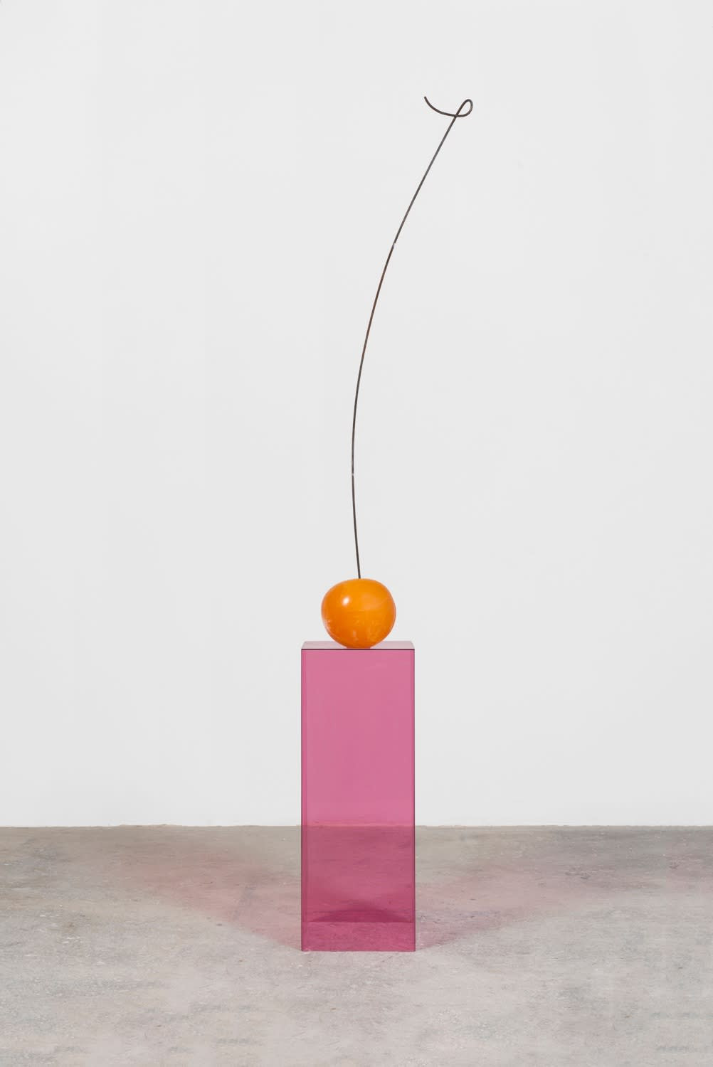 In this artwork by the artist Nevine Mahmoud, a sculpture depicting a cherry is placed on top of a pink-red translucent pedestal. The cherry sculpture is an orange-red color, and has a brown, very tall, slightly curved stem going upwards.