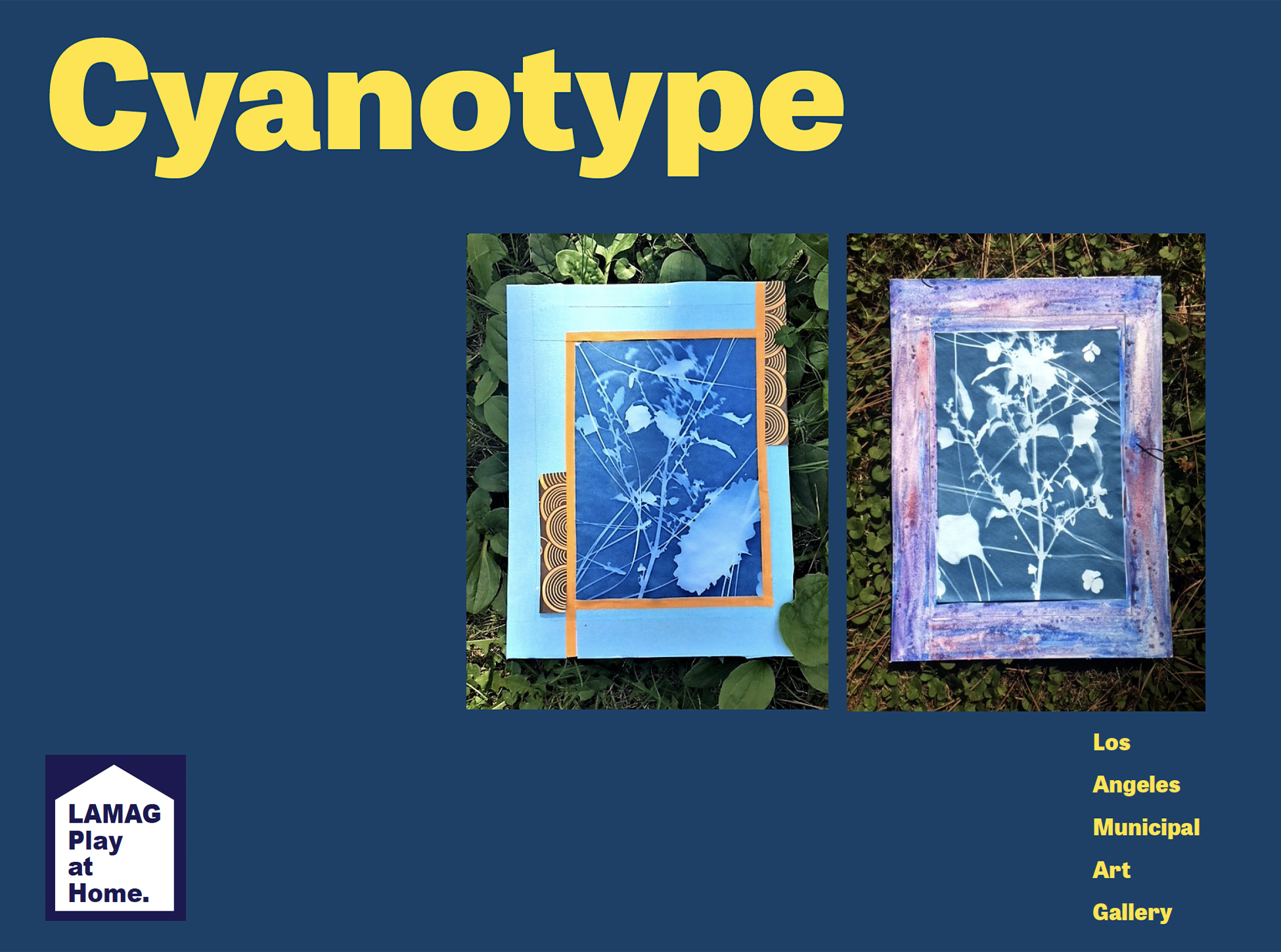 The cover image of the Cyanotype PDF includes a dark blue background and two images of cyanotypes side by side. The cyanotype on the left has a blue paper frame background and is on top of grass. The cyanotype on the right has a purple paper frame and is also placed on top of grass.