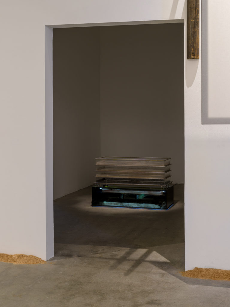 This is a color photograph of two artworks by Lukas Geronimas. The artwork is placed on the floor in a small room and can be seen through an open doorway. The artwork shown in the photo is Airy Copy Lane Chest, a sculptural work with a dimly lit, smoked-plexiglass base containing the elements that failed to be included in the finished version of the object atop the base. The object on top of the base are four tiers of hand-built webbing with puzzle pieces, framed in aluminum and plexiglass and dust. In the foreground in the larger attached room and along the perimeter of the floor and walls is another artwork titled Puzzledust, which is sawdust that was produced, collected and stored by the artist over the past two years