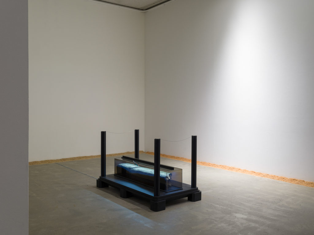 This is a color photograph of two artworks by Lukas Geronimas. In the foreground is the sculpture entitled Mayfair Column Remainder, which is depicted at a slight angle. It has been placed on the floor, centered in the room. It consists of a rectangular black platform with four black posts in each corner. Centered on the platform is a rectangular column on its side, made of transparent plexiglass containing a railroad tie, which is a rectangular piece of wood. It is illuminated with an LED light. In the background to the right of the sculpture and along the perimeter of the floor and walls of this installation is another artwork titled Puzzledust, which is sawdust that was produced, collected and stored by the artist over the past two years.